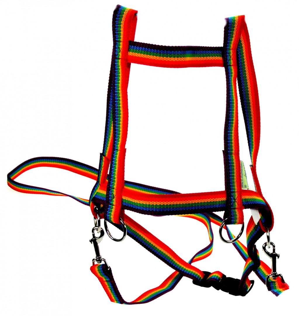 Artikelbild: Pferdchen-Leine